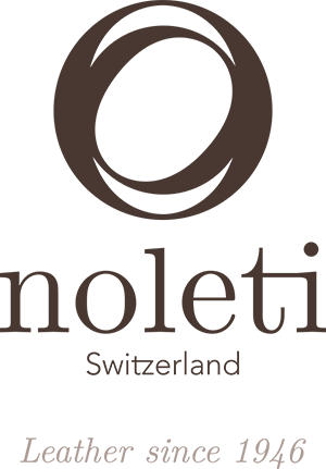 noleti_logo_positif